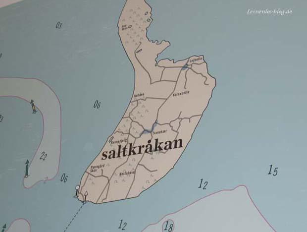 Cafe Saltkrokan, Konzept