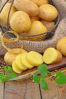 Systemgastro-Trend Kartoffel
