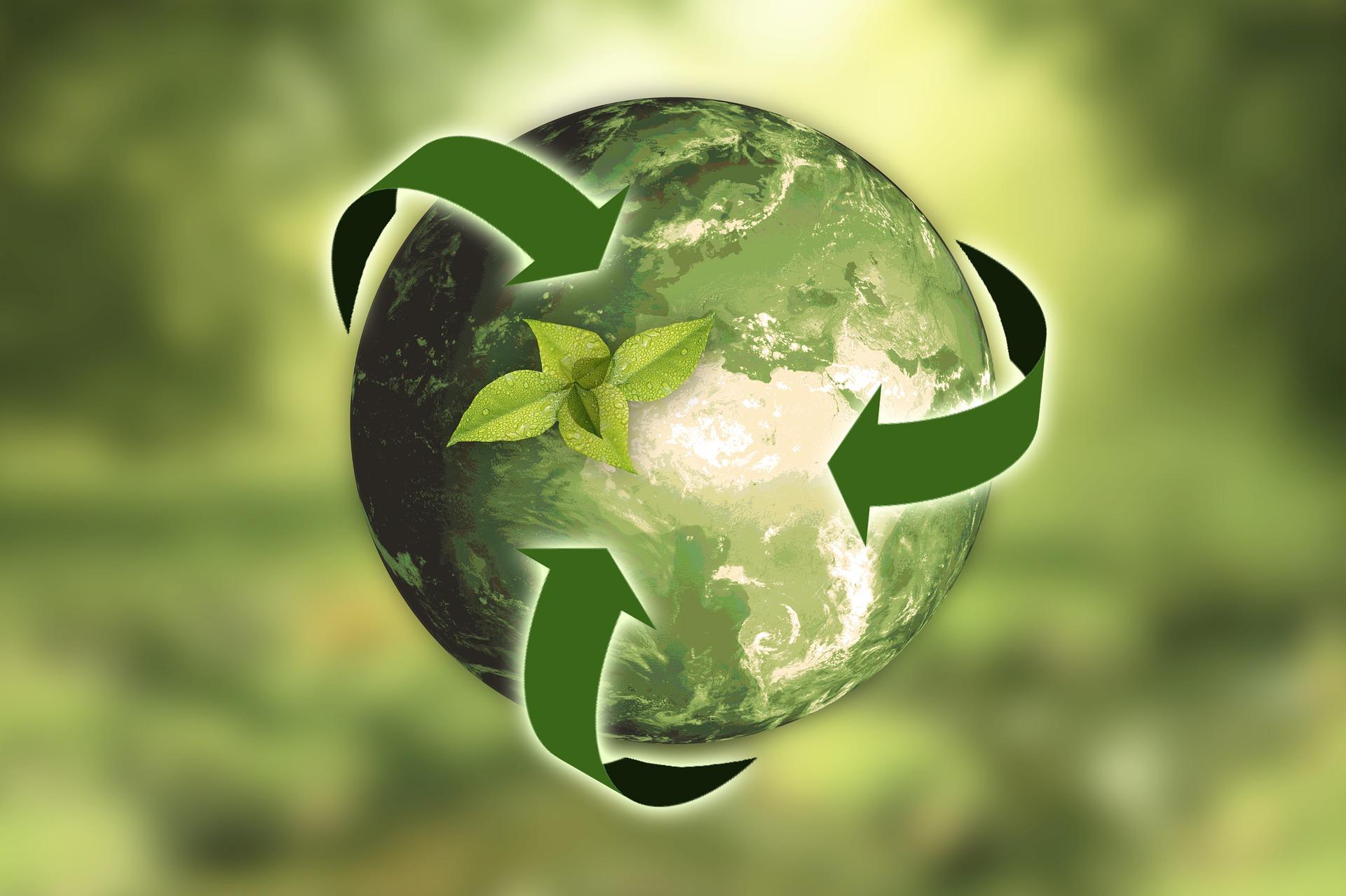 Nachhaltigkeit in der Gastronomie