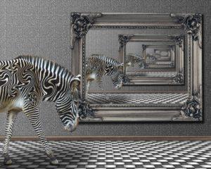Zebra Bild im Bild
