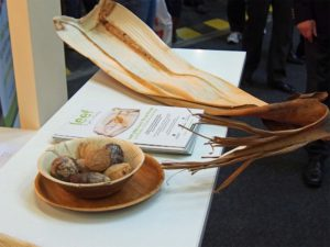 Nachhaltiger Rohstoff: Palmblatt