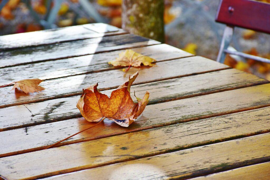 Gastronomie im Herbst und Winter