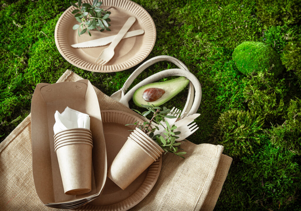 Environmentally friendly, disposable, recyclable tableware: paper food boxes, plates and cutlery